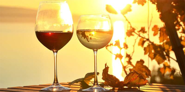 夏末秋初,尝尝这6款葡萄酒吧